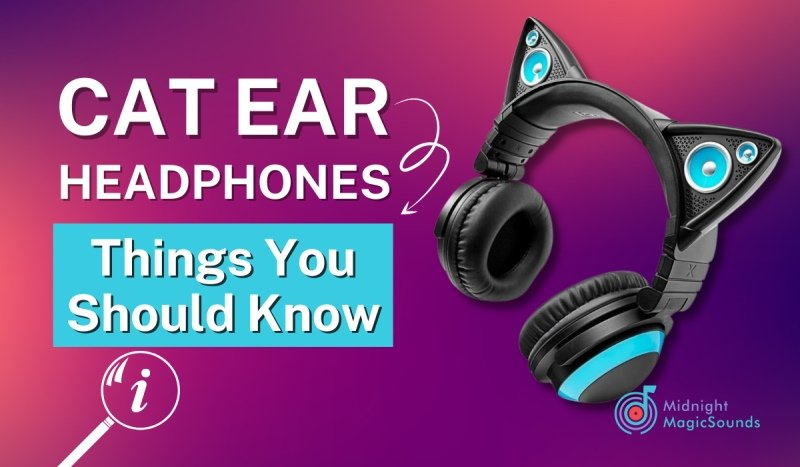 Cat Ear Headphones - Things You Should Know