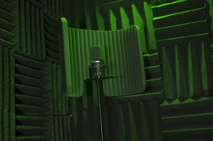Why Should I Get a Microphone Isolation Shield